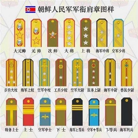 解读朝鲜军衔等级 金正恩前4人有元帅军衔