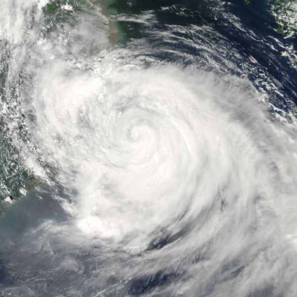 台风麦莎的卫星云图-回顾 2005年强台风麦莎席卷中国 近十年最强台风图片
