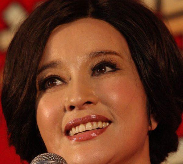 刘晓庆无PS超清晰近照-丑闻新贵赵雅芝PK整容女王刘晓庆 谁是中国