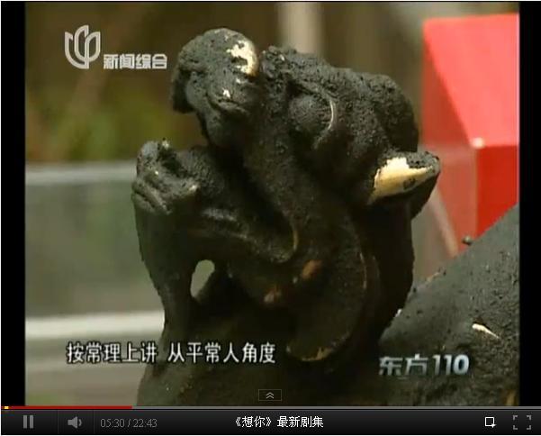"""东方110:惊人夺""""宝""""记"""