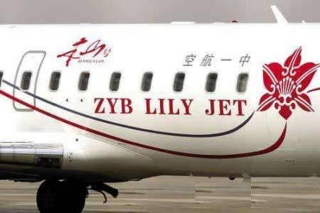 中国将成最大私人飞机拥有国 盘点世界最豪华私人飞机内饰