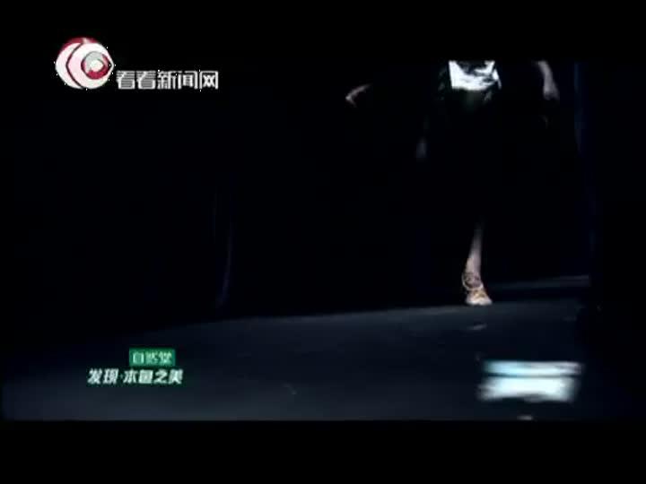 """舞林争霸第二期:曾对舞台失望转战广告圈 杨帅重拾梦想""""妖娆"""""""
