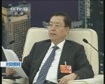 张德江参加香港 澳门代表团审议