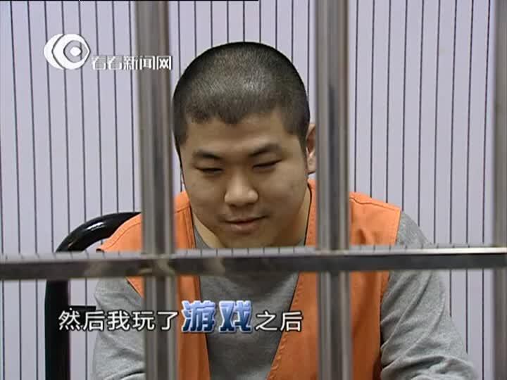 庭审纪实20130706预告片:走私枪支的人