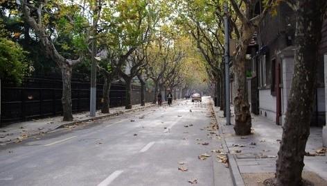 看懂上海:思南路-城市历史活话本 - 美人迟暮 - 美人迟暮,知足尔乐