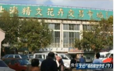 看懂上海:文化广场的前世 - 美人迟暮 - 美人迟暮,知足尔乐