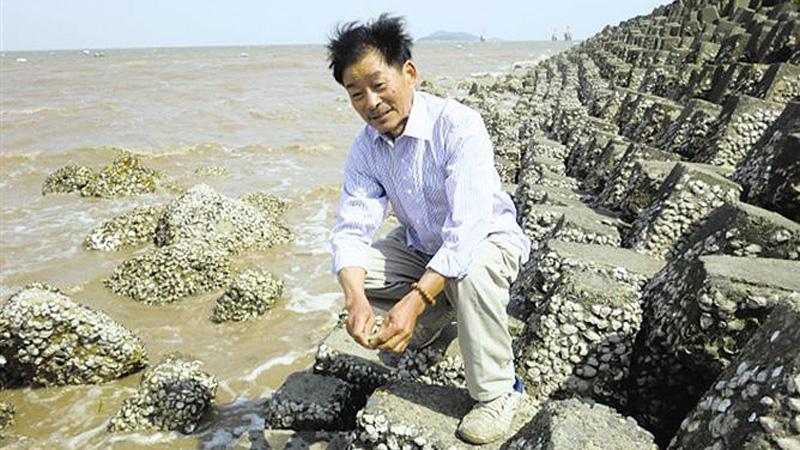 王仁良当了30多年海洋监测员,每年有200多天的时间都待在大戢山岛。