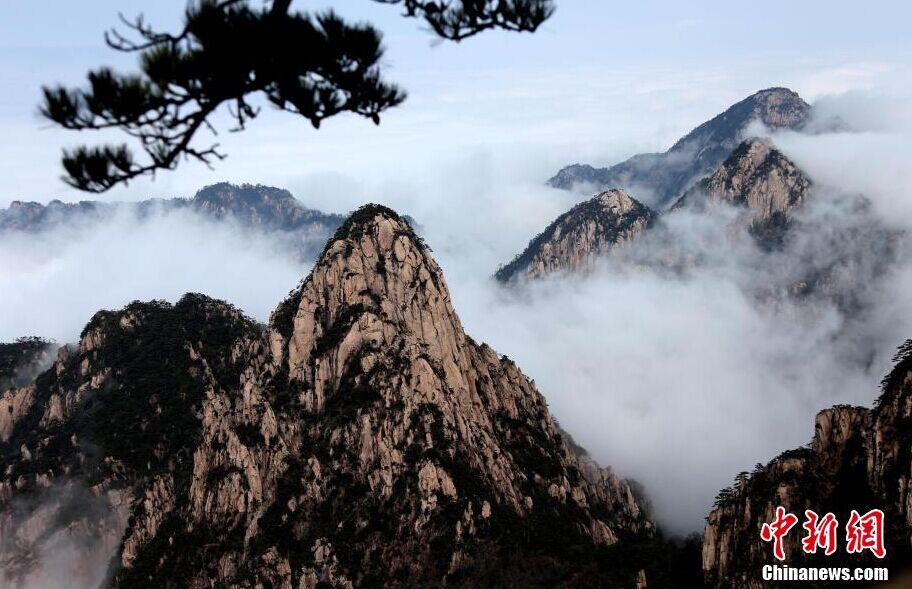 安徽黄山现羊年首场壮观云海