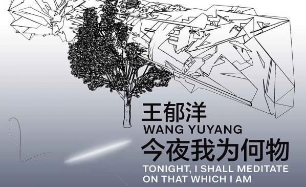 王郁洋:今夜我为何物