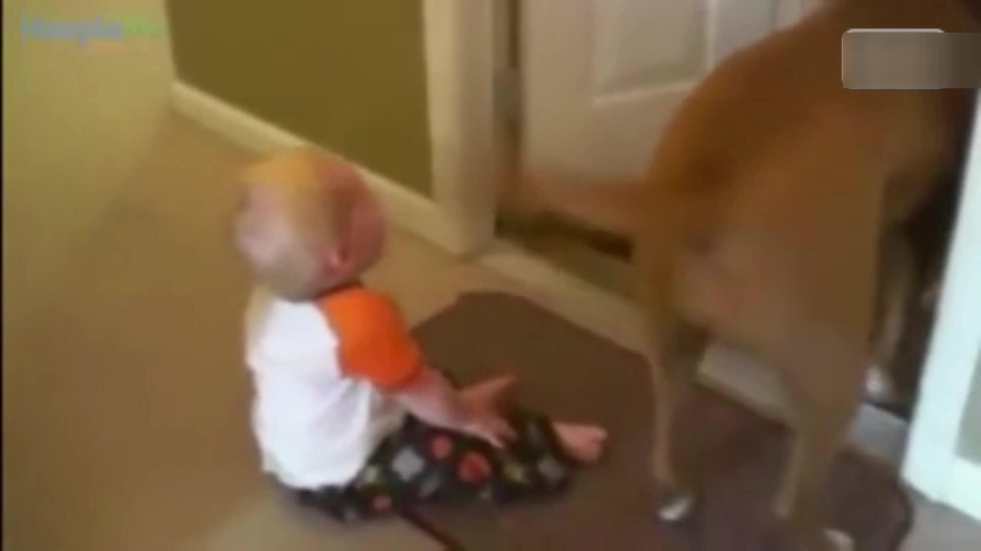 第3秒就催泪了 宝宝看到爸爸回家的反应