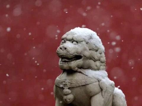 北京,初雪中的故宫,美哭。