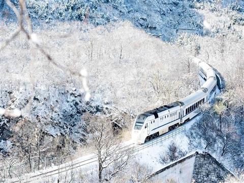 组图:春日列车开往雪城