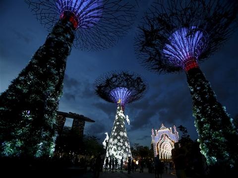 """畅游世界过圣诞 各国圣诞树""""主要看气质"""""""