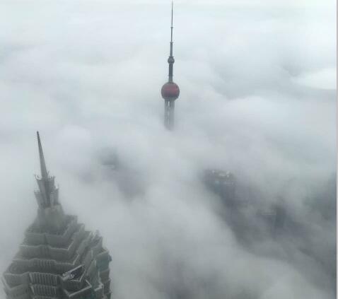 大雾笼罩上海:明珠才露尖尖角 金茂隔雾远望君