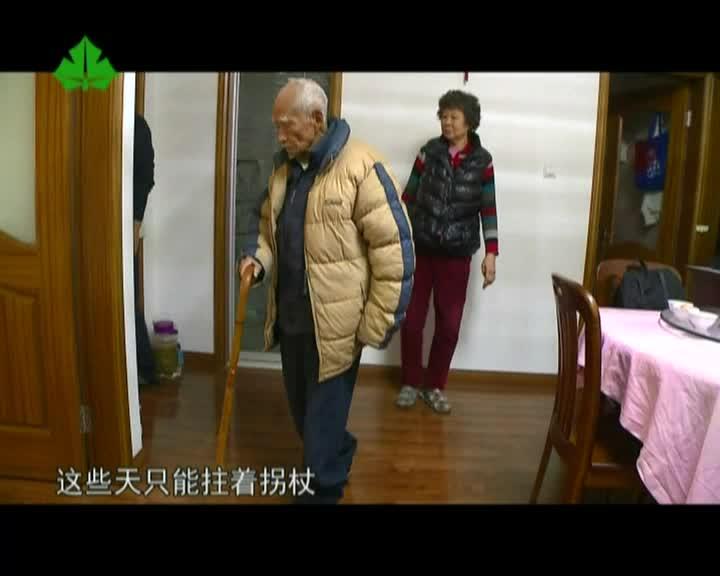 银龄宝典:110岁老人的长寿秘籍和生活护理