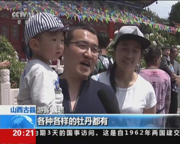五一假期·景区·山西古县:牡丹花开  五一客流最高10万