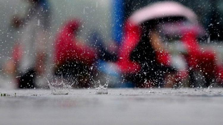 申城梅雨天何时方休? 预计7月上旬到中旬就能出梅