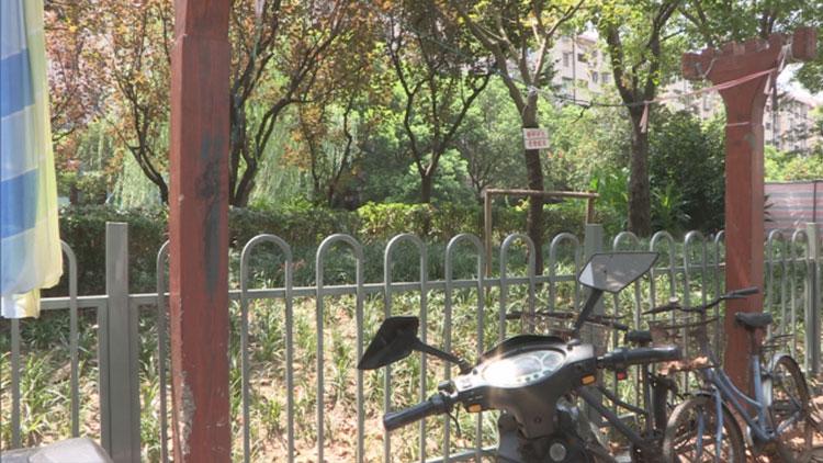 沪男子疑似花坛边玩手机 头卡入栏杆不幸身亡