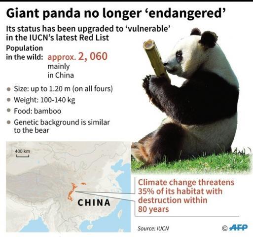 """另一个国际环保组织""""野生动物保护协会""""首席环保官"""