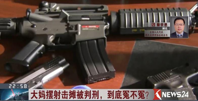 蔡学恩:仿真枪管理应科学规范