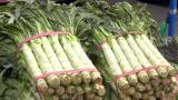 南方蔬菜集中上市 北京菜价近期走低