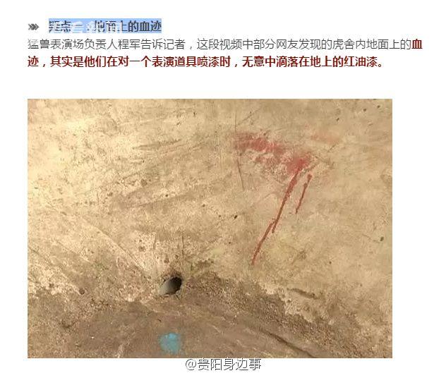 网友抓出园内石头上的疑似血迹