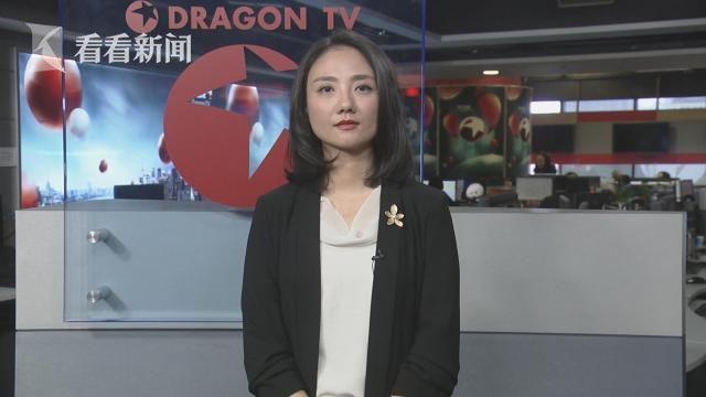 复旦大学中国研究院助理研究员 白果