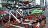 视频|共享单车围困地铁站,怎么治?