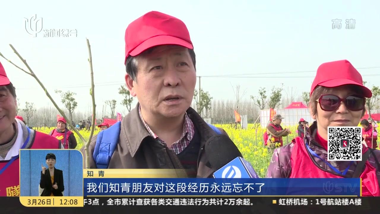 知青聚首菜花田  追潮流航拍集体照