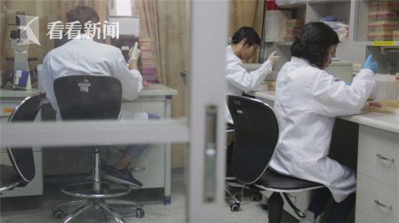 汕头大学医学院国际感染与免疫研究所,管轶与朱华晨的研究团队在做实验。