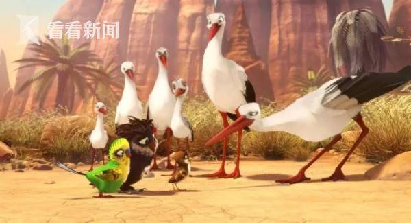 《小鸟总动员》。