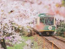 大魔都里的小火车 坐着去感受浪漫文艺小清