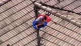 视频|家人要疯了!11岁叛逆男童和妈妈闹掰 爬上屋顶玩失踪