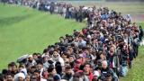 视频|观视频工作室:中东难民如果来中国 该不该接收?