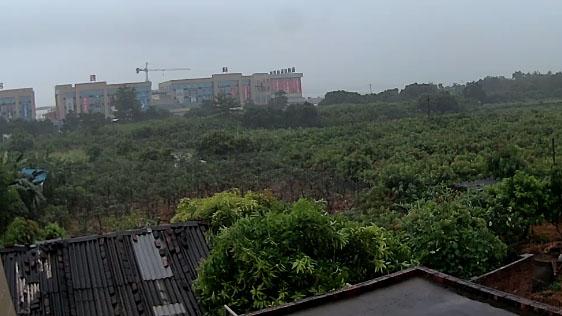 """台风蓝色预警:今晨台风""""天鸽""""中心位于广西"""