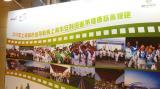 2017上海市安利纽崔莱健康慈善慢跑10月沪上起跑