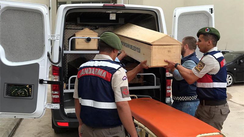 土耳其黑海海域难民船事故死亡人数增至19人