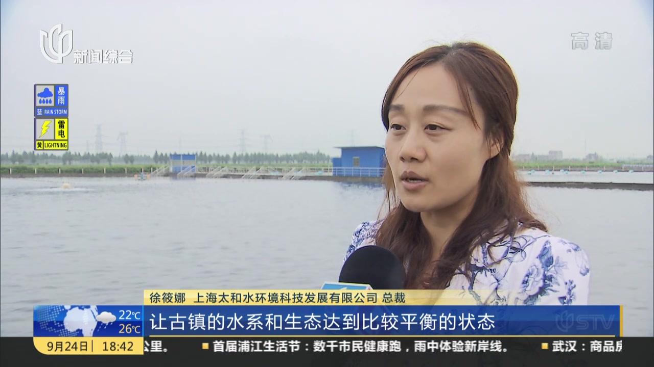 金山枫泾:古意不减又添新意  打造特色小镇升级版
