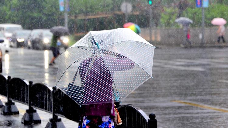 暴雨预警信号升级 今天上海局地仍有大到暴雨