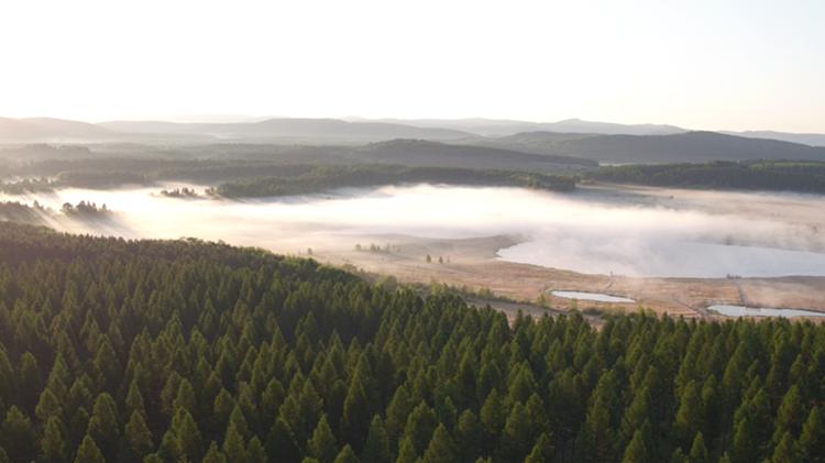 视频 | 塞罕坝机械林场:三代人用55年做成了一件大事