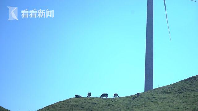 南山牧场风力发电