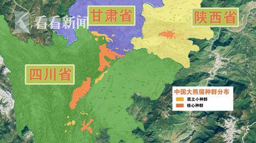 大熊猫栖息地破碎化严重