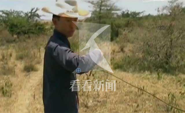 黄泓翔带领志愿者参与剪铁丝网活动