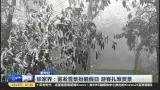 新华社:张家界——雾凇雪景扮靓假日  游客扎堆赏景