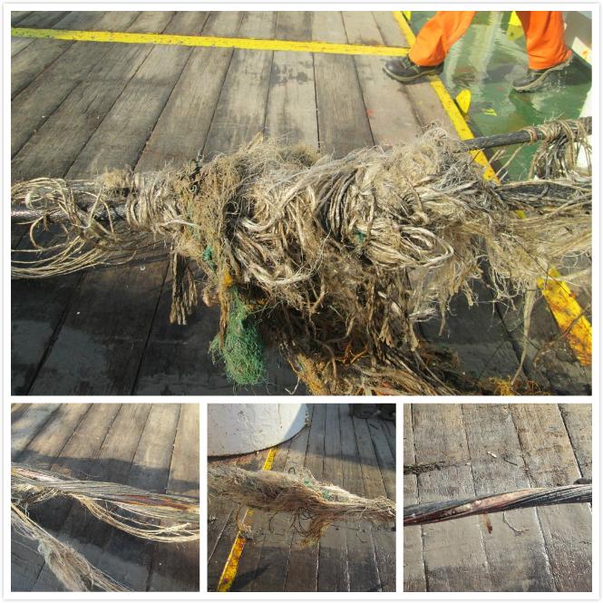 2016年11月30日APG亚太海底光缆被捕鱼作业造成损坏