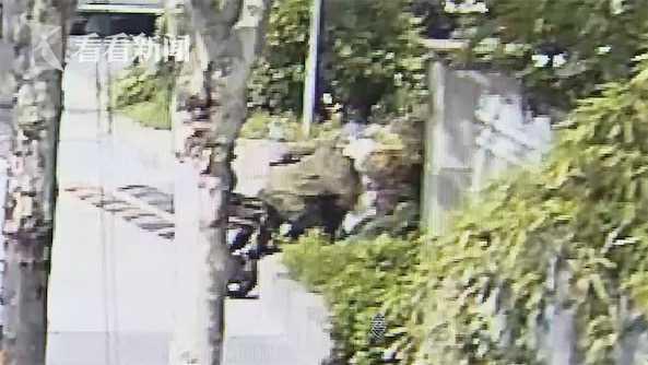 bob电竞:视频|钟点工盗窃后赃物扔进绿化带 不料被人捡走