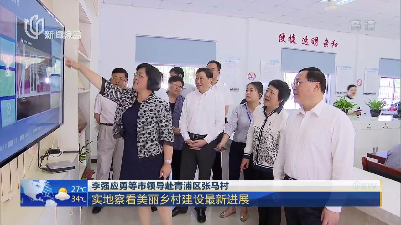 李强应勇等市领导赴青浦区张马村  实地察看美丽乡村建设最新进展