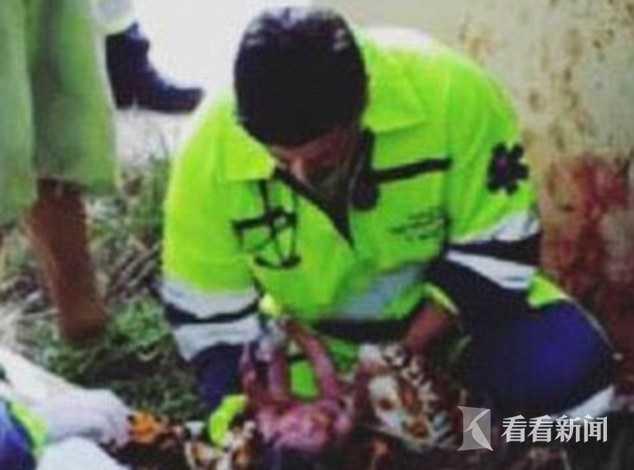 巴西一孕妇遇车祸被木板压死 胎儿落草坪奇迹生还