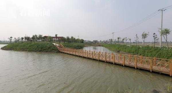 鱼塘改造的湿地公园