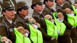 画风萌萌哒!智利阅兵式警犬穿上鞋 幼崽抱怀里